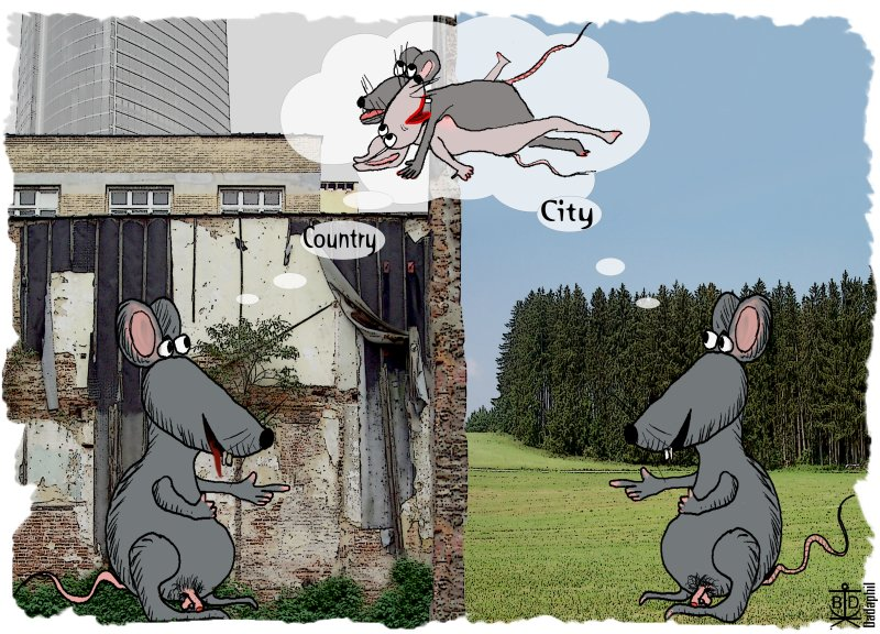 City_Country 2